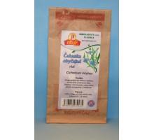 Čaj Čakanka obyčajná – vňať (Cichorium intybus) - sypaný